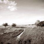 Countryside Alliance / Rupert